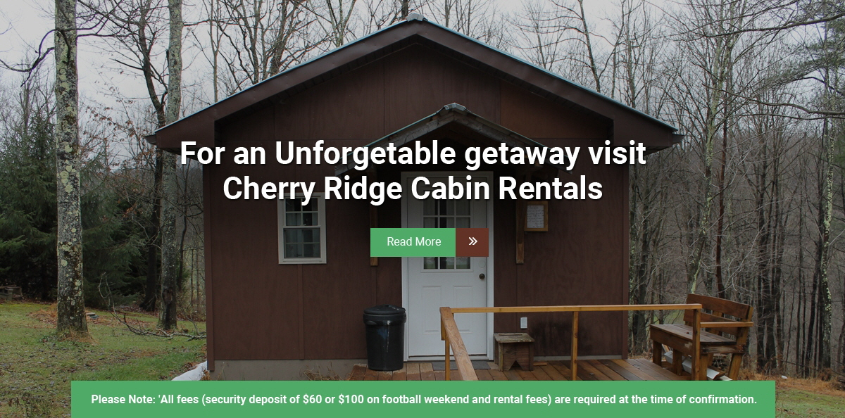 cherry ridge cabins - cabin rentals in centre county, pa